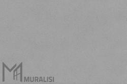 Colore infissi in acciaio F.MW005JR – Finiture ferro – Muralisi