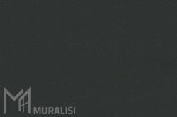 Colore infissi in acciaio F.MW301M – Finiture ferro – Muralisi