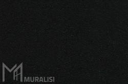Colore infissi in acciaio F.RW504I – Finiture ferro – Muralisi