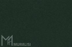 Colore infissi in acciaio F.SK454JR – Finiture ferro – Muralisi