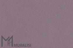 Colore infissi in acciai F.YW285G – Colori per ferro – Muralisi