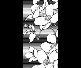 Vetri stampati natura Laborvetro – Sintonia EB